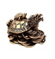TORTUE DRAGON